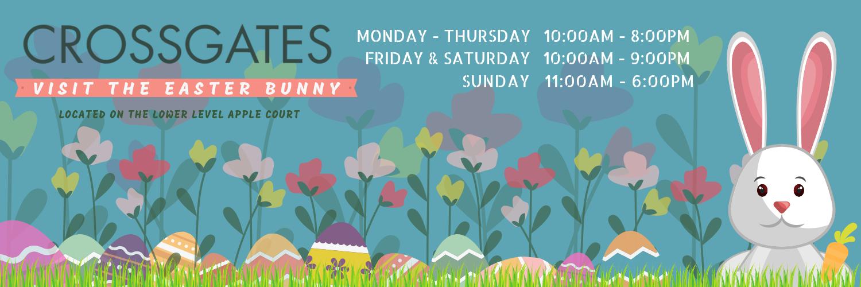 Bunny Land Flyer Website