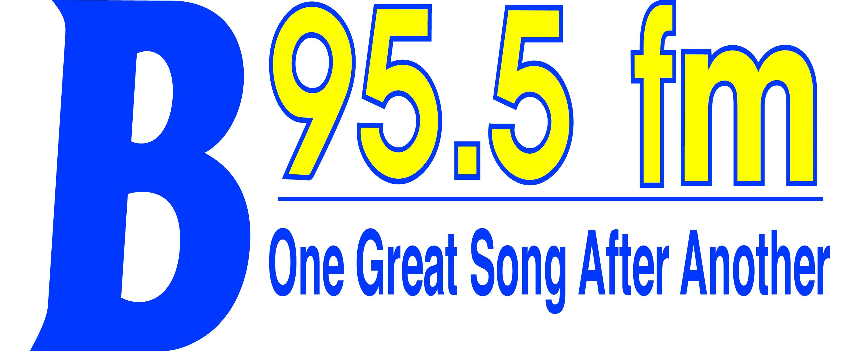 B95_2012_Logo_Final