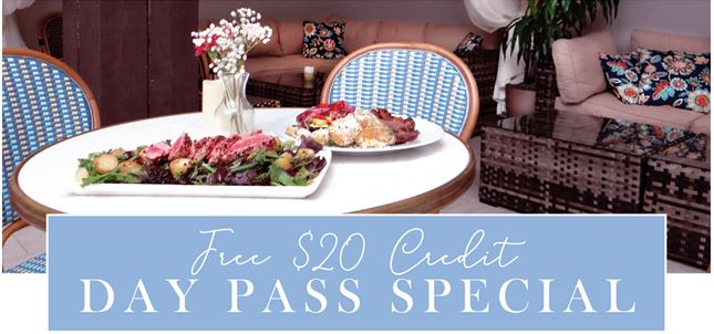 Spa day pass special