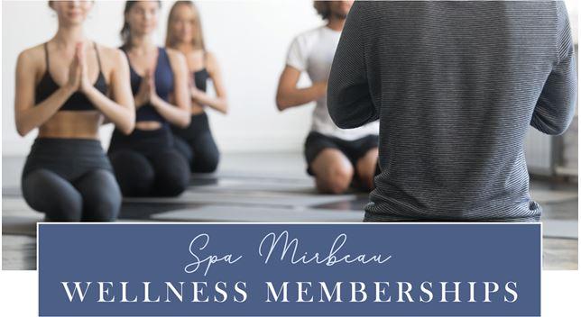 wellness membership 2
