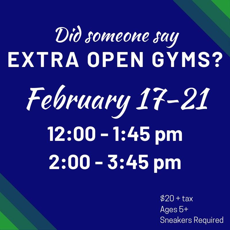 Albany Ninja Lab February Break Open Gym