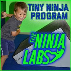 Albany Ninja Lab tiny ninjas