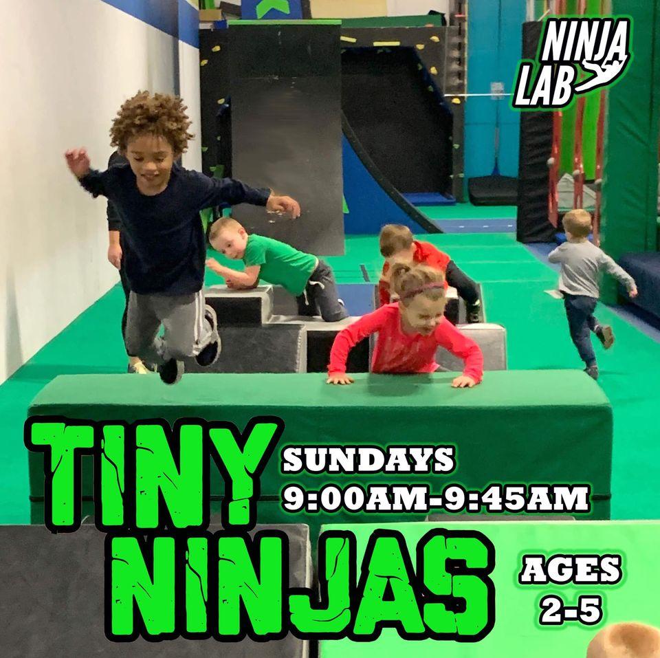 Albany Ninja Lab Tiny Ninjas updated
